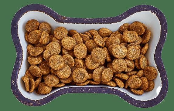 dog food bowl of dry food