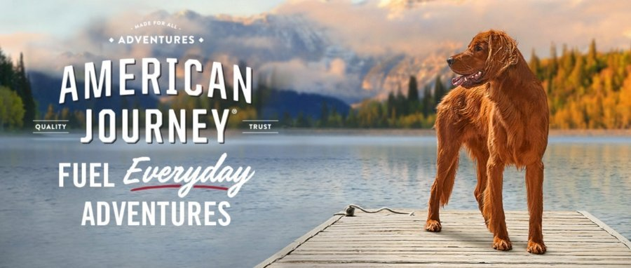 American Journey Dog